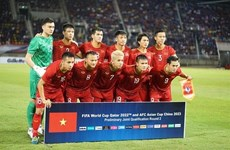 Next Media owns exclusive rights to broadcast VN World Cup matches