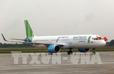 Bamboo Airways to launch regular flights to Seoul
