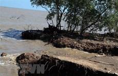 Kien Giang needs over 68.8 million USD to tackle coastal erosion