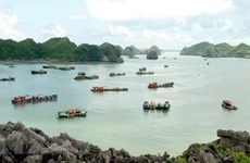 Hai Phong draws visitors to Cat Ba island