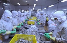 Vietnam continues to enjoy trade surplus with Israel