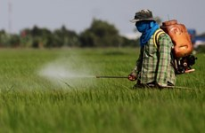 Thailand bans three toxic farm chemicals from December