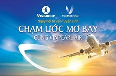 Vinpearl Air eligible for establishment: Transport Ministry