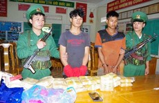 Quang Binh: biggest trans-border drug trafficking ring busted
