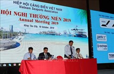 Vietnam Seaports Association proposes raising service fees