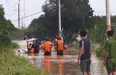 Vietnam, Japan share measures to cope with flash flood, landslides