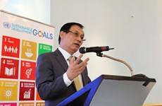 UN has crucial role in Vietnam: diplomat