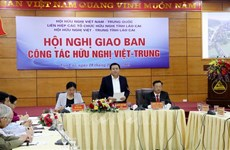 Friendship association works to foster Vietnam-China ties