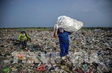 Stronger actions urged to reduce plastic waste in aquaculture sector