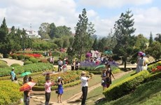 Flower Festival returns to Da Lat in December