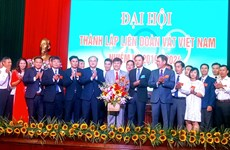 Vietnam wrestling federation president named