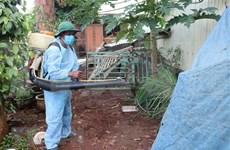 Hanoi strives to control dengue fever by November
