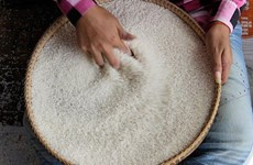 China to import more rice from Cambodia