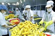 Vietnam seeks to boost fruit-vegie-flower exports to Asia, Europe