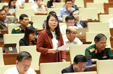 Bill on entry, exit of Vietnamese citizens under spotlight at NA on October 28