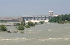 Dong Nai River water to reach top alert level