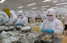 Domestic firms outpace foreign invested peers in exports growth