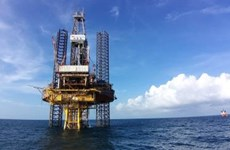 Vietsovpetro welcomes first oil flow from Bach Ho field's BK-20 rig