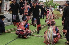 Various activities to honour culture of Vietnamese ethnic groups