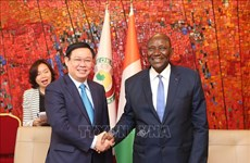 Vietnam, Ivory Coast hold huge cooperation potential: Deputy PM