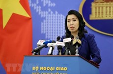 Essex lorry deaths a great humanitarian tragedy: Foreign Ministry spokesperson