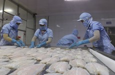 US recognises Vietnam's pangasius quality control system