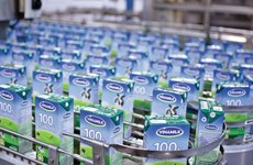 Vinamilk Q3 profit meets 80 percent of yearly target