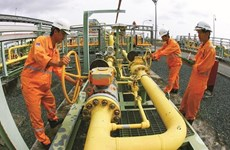 PetroVietnam tops list of most profitable firms