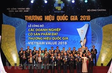 Vietnam's national brand valued at 247 billion USD
