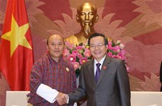 Vietnam, Bhutan seek stronger audit cooperation