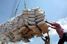 Rice export revenue suffers from price drop