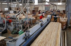 Temporary suspension of import and re-export of plywood to US