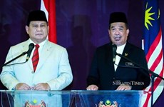 Malaysia, Indonesia step up defence cooperation