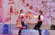 Hungarian cultural week kicks off in Can Tho