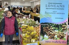 Long journey of Vietnamese fruits to Australia