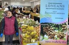 Long journey of Vietnamese fruits to Australia