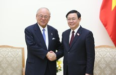 Vietnam treasures extensive strategic partnership with Japan