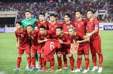 Vietnam placed No 92 in FIFA's November rankings