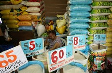 Philippine President orders suspension of rice imports