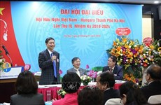 Association works hard to forge Vietnam-Hungary ties