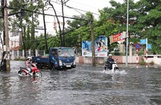 HCM City, Mekong Delta face serious land subsidence