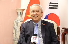 Vietnam-RoK relationship thriving in all spheres: ambassador