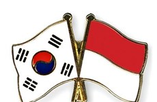 RoK, Indonesia boost bilateral cooperation
