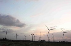 Trung Nam wind power plant's second stage starts generation