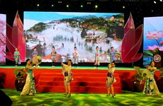 Fifth Vietnam – Japan cultural exchange festival ends
