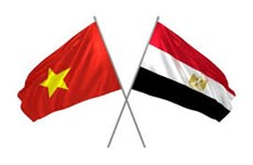 Vietnam, Egypt look to strengthen trade, investment connectivity