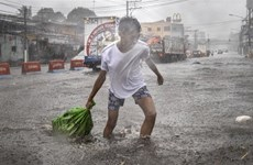 Typhoon Kammuri kills at least two in Philippines