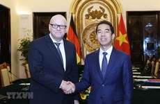 Vietnam – Germany strategic management group convenes fifth meeting