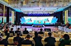 Vietnam Travel & Tourism Summit 2019 opens in Hanoi