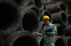 Hoa Phat's steel pipe export surges 22.3 pct in 11 months